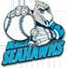 Kiel_Seahawks_logo_75px