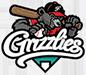 Freising_Grizzlies_logo_75px