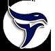 Ulm_Falcons_logo_75px
